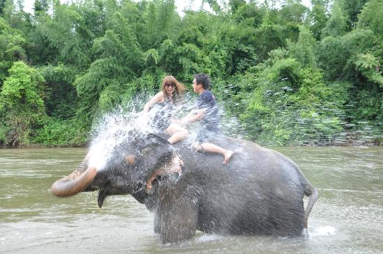 Bath With Elephant | TripAdvisor™