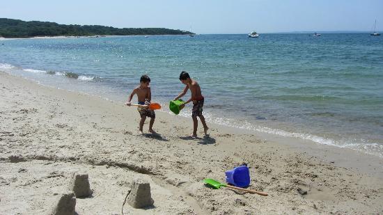 Lambert's Cove Beach: Beautiful Day!