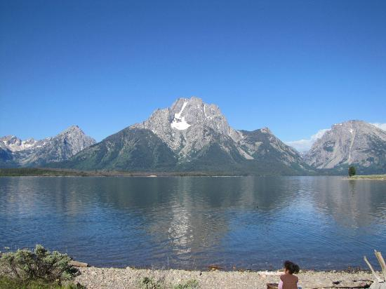 Grand Teton Lodge Company Lake Cruise : View of Mount Moran for shore of Elk island