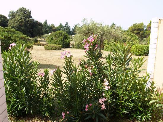 Naturist Park Koversada Villas: view