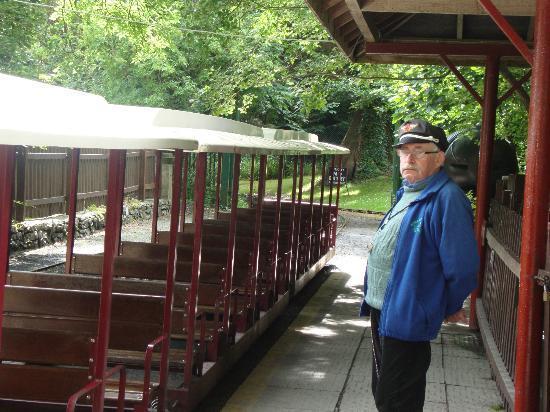 Westport House & Pirate Adventure Park : Train ride