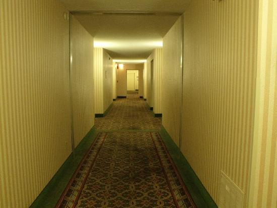 Ramada Plaza Grand Rapids: Hallway
