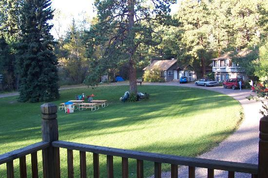 Bauers Spruce Island Chalets: View across the lawn toward the Willows
