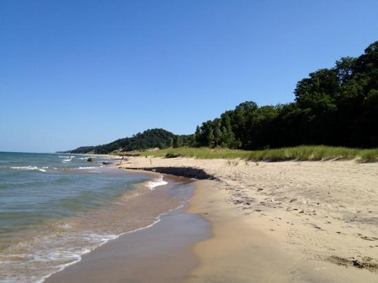 Saugatuck Dunes State Park: Great lakes, no salt no sharks no problems!