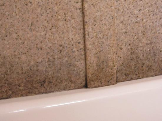 Days Inn Mount Hope: close up of mold/mildew on shower wall