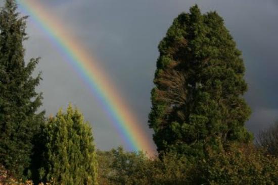 Abriachan Nurseries - The Garden On Loch Ness: Rainbow over the garden