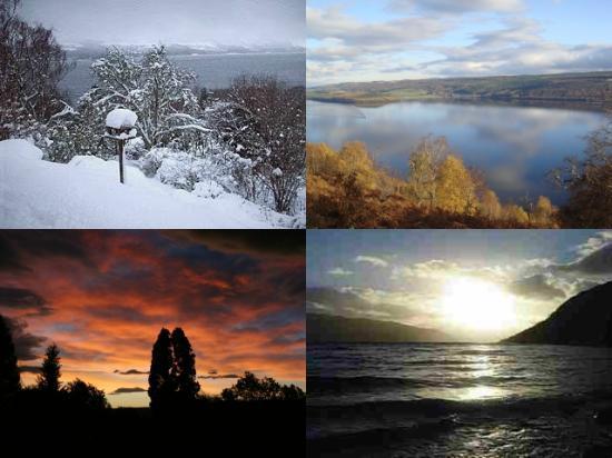 Abriachan Nurseries - The Garden On Loch Ness: Garden Collage
