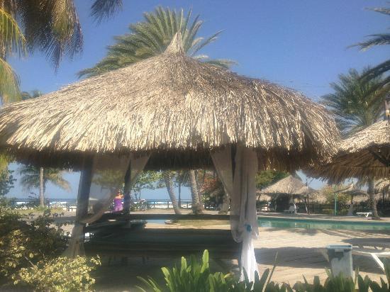 Coche Paradise Hotel Isla Margarita: Para decansar junto a la piscina