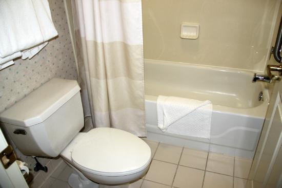 Sonesta ES Suites Minneapolis - St. Paul Airport: Toilet and bathtub area
