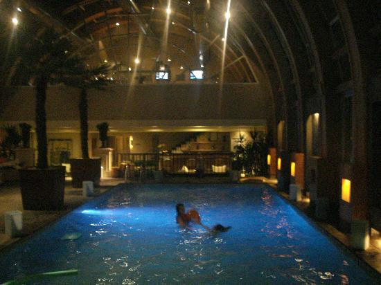 The Ritz-Carlton, Santiago: Piscina