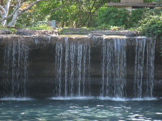 Hyatt Regency Hill Country Resort and Spa: pool waterfall