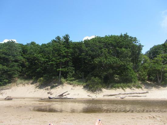 Hoffmaster State Park : Campground Beach