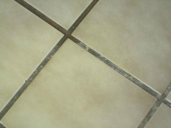 American Inn & Suites: Dirty Bathroom Floor