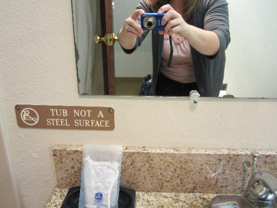 Ramada Tukwila Southcenter : Badly worn mirror in bathroom.