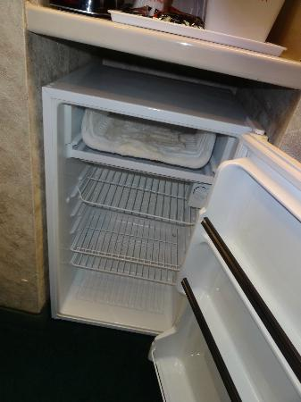 Ramada South El Monte: Full fridge photo