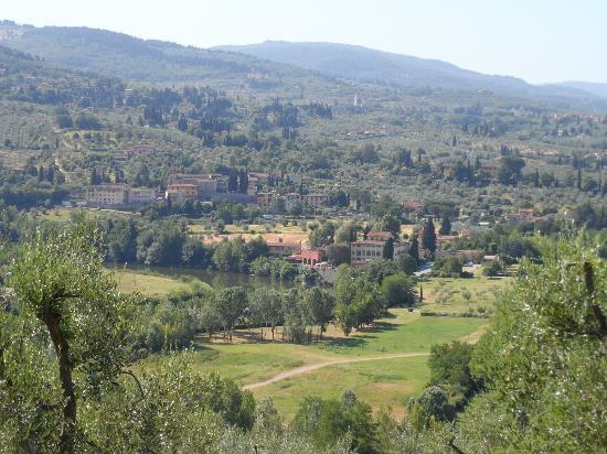 A Casa di Olivo: More views from the olive grove