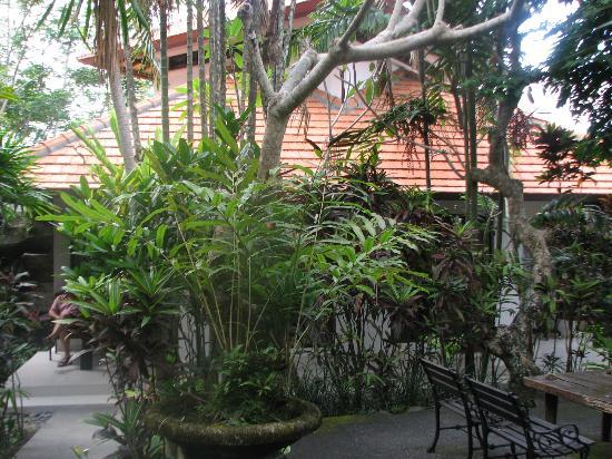 Taman Harum Cottages: Family villa set in amongst the bush