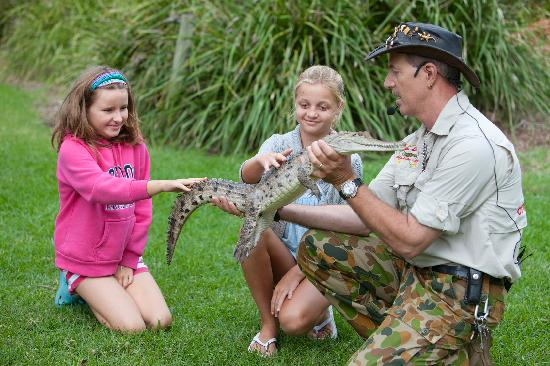 Shoal Bay Holiday Park School Holiday Activities - Reptile Show
