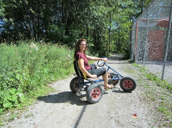 Fern Resort : Free bike rentals to ride through extensive trails