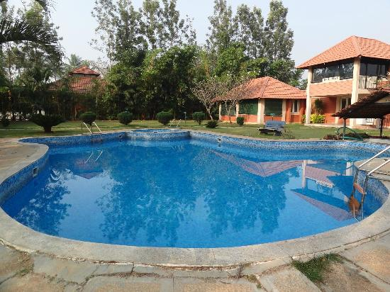 Young Island Resorts: Swimming pool was small but nice