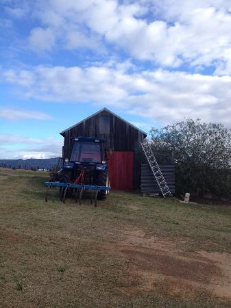 Red Door Collective: Dennis' farmhouse on the estate