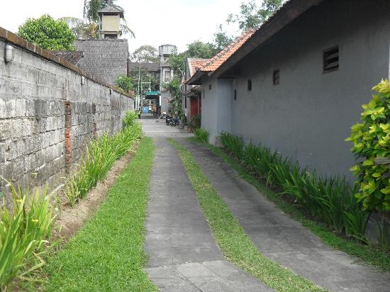 Robins Place: laneway from the villa to the main street, so well maintained