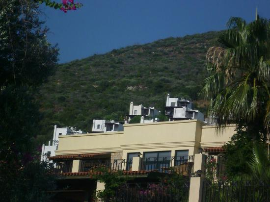 Hotel Zeytinada: View of mountain