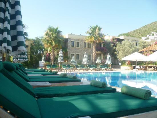 Hotel Zeytinada: Pool area