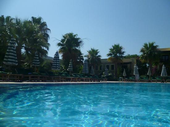 Hotel Zeytinada: Another view from Sunbed