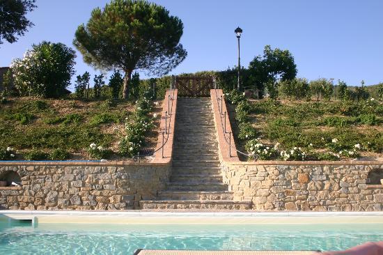 Il Nido Degli Ulivi: Steps to pool