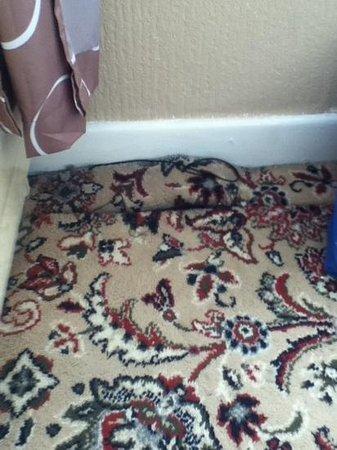The Clarendon Showtel:                   carpet