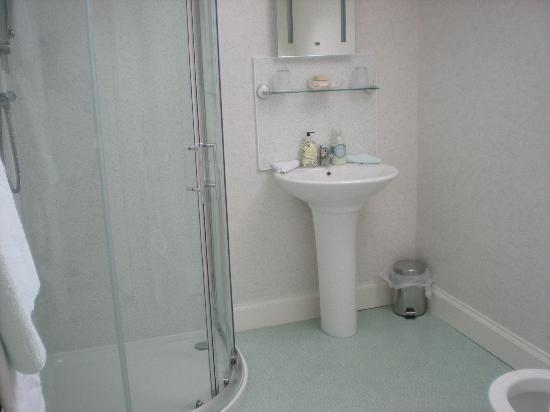 Hollyburn House Bed and Breakfast: en suite in twin room