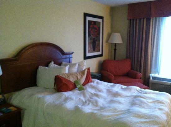 Hilton Garden Inn Kankakee : Room -
