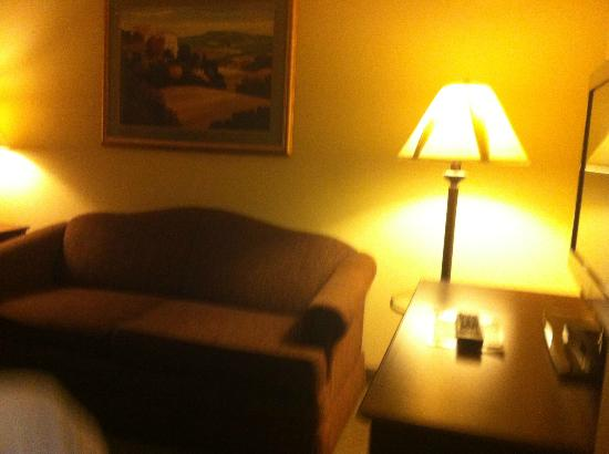 Country Inn & Suites By Carlson, St. Cloud East: The Couch