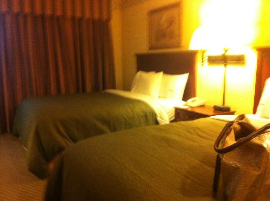 Country Inn & Suites By Carlson, St. Cloud East: The Beds
