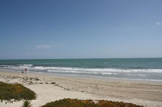 Radisson Blu Ulysse Resort & Thalasso Djerba: plage