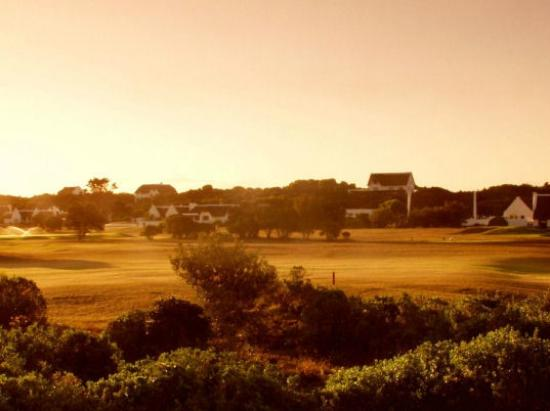 Milkwood Country Cottage : Golf on our doorstep