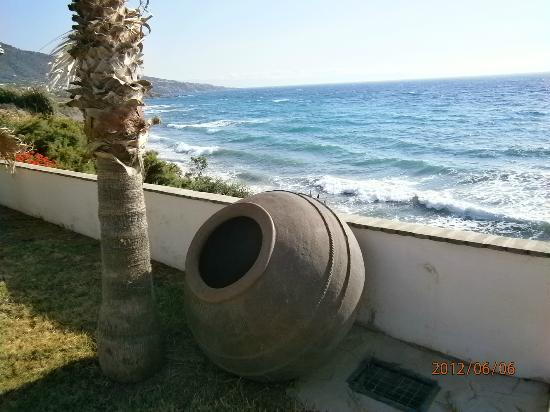 Sun Camero Beach Apartments: Giardino