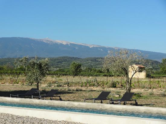 Bastide de Lestagnau : vineyards with Mont Ventoux at the back