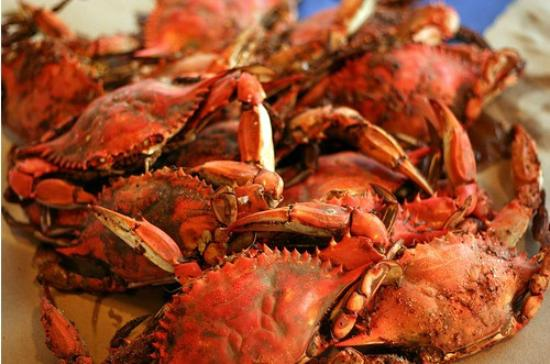 Crabby Bill's: Steamed Blue Crabs!