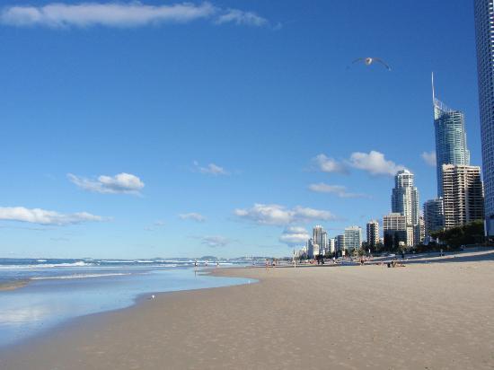 Surfer's Paradise Beach : 広いビーチ