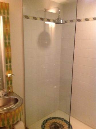The Hotel of South Beach: shower room 324