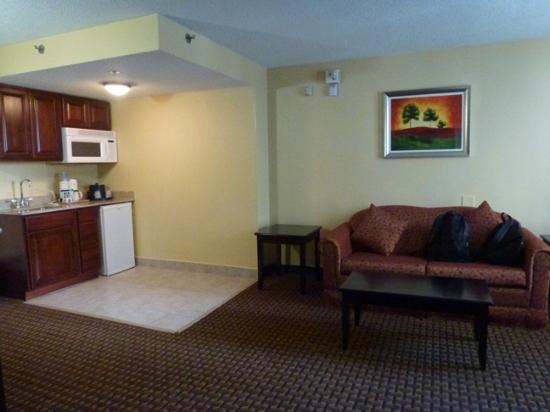 Holiday Inn Express Detroit - Downtown: Living area
