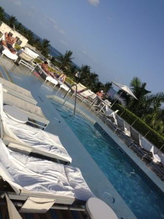 The Hotel of South Beach: roof top pool and chairs