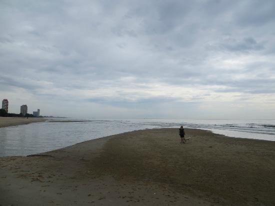 The Regent Cha Am Beach Resort: beach