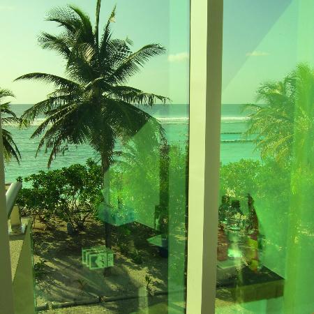 Fern Boquete Inn: View