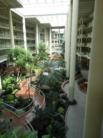 Embassy Suites by Hilton Parsippany: Botanical garden in lobby