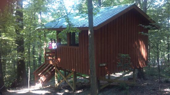Maple Tree Campground: Treehouse exterior