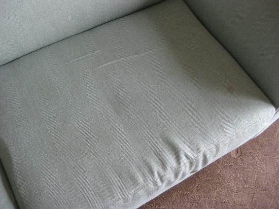 DoubleTree Suites by Hilton Doheny Beach - Dana Point: Stains on the sofa