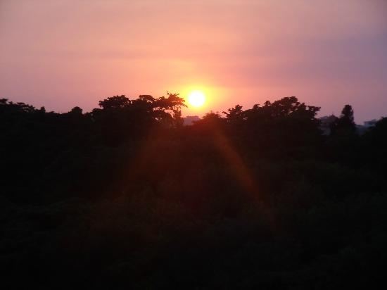 سيلفيا هوتل: The view from our room when the sun is going down 